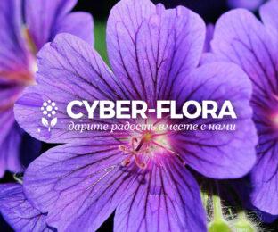 Дизайн логотипа для онлайн магазина цветов и службы их доставки Cyber-Flora
